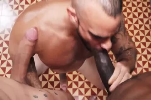 White gay butthole poked By BBC And BWC In bare - GayTV